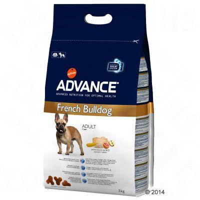 Advance French Bulldog Adult pour chien