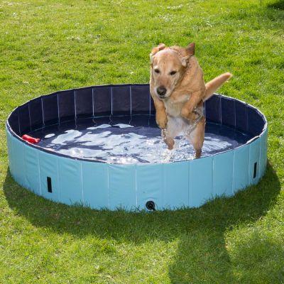 Bazén pre psov