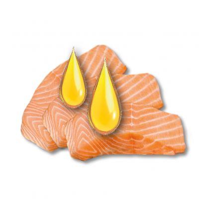 Beaphar Pastiglie all'olio di salmone