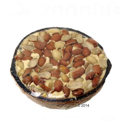 Bob Martin Mezze noci di cocco
