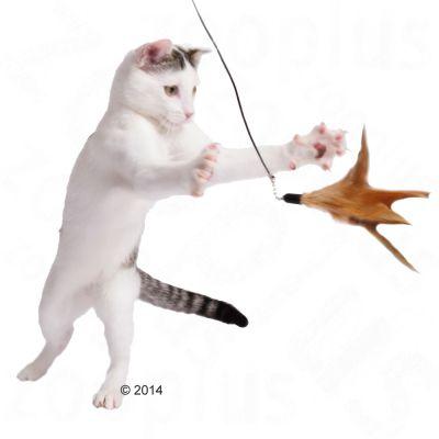 Caña 3 en 1 para gatos