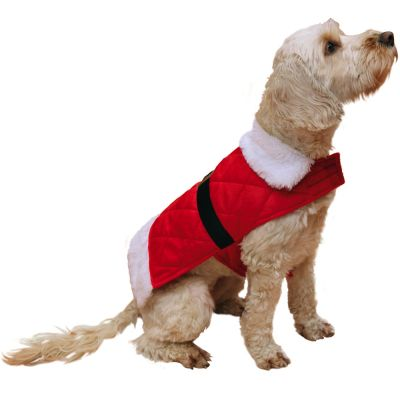 Cappotto Babbo Natale Rosewood per cani