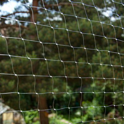 Cat Safety Net - Transparent
