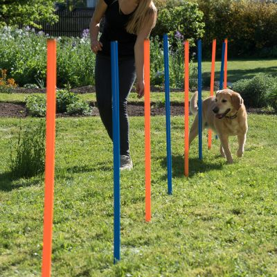 Complete Set - Outdoor Agility Fun & Sport