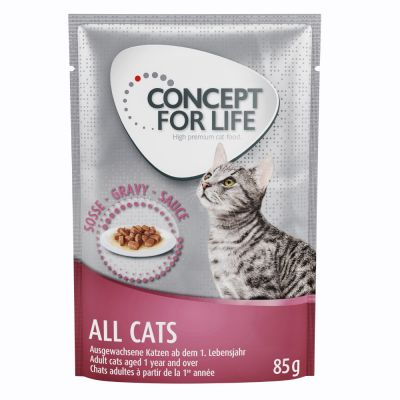 Concept for Life All Cats - in salsa