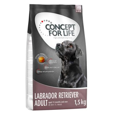 Concept for Life Labrador Retriever Adult