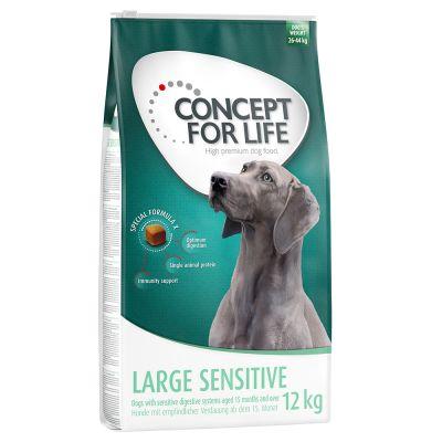 Concept for Life Large Sensitive