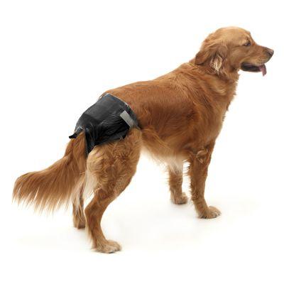 Savic comfort nappy couches jetables pour chien zooplus - Couche pour chien femelle ...