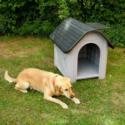 Cuccia per cani in plastica Polly