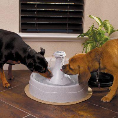 Drinkwell 360 vattenfontän, 3,8 l by PetSafe