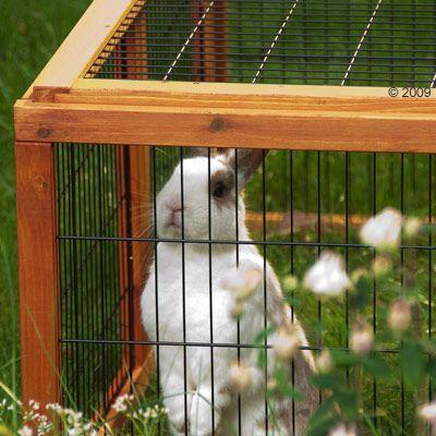 Enclos Outback Compact, carré pour rongeur et lapin