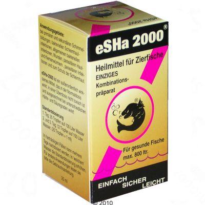 eSHa - 2000