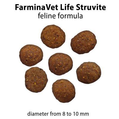 Farmina Vet Life Struvite Feline Formula