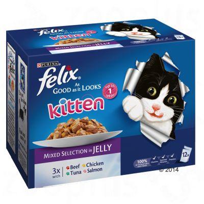 Felix Kitten Food Review