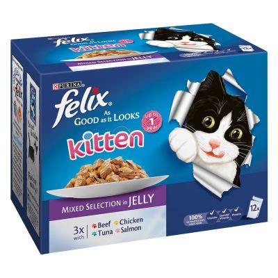 Felix Kitten As Good As It Looks