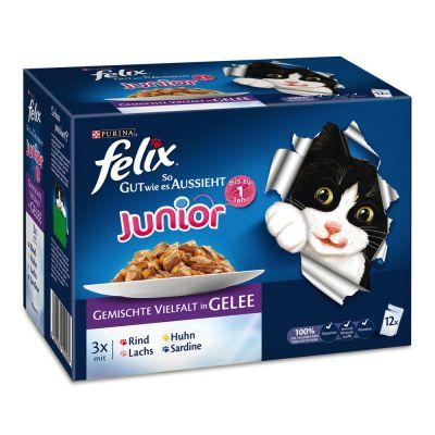 Felix Le Ghiottonerie Junior in gelatina