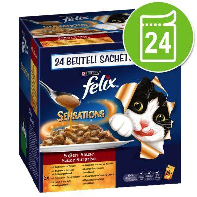 Felix Sensations in Salsa 24 x 100 g