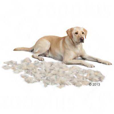 FURminator M pelo lungo per cani