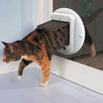 Gattaiola Cat Mate Elite con microchip e timer
