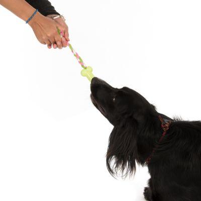 Gioco per cani Osso in TPR con corda