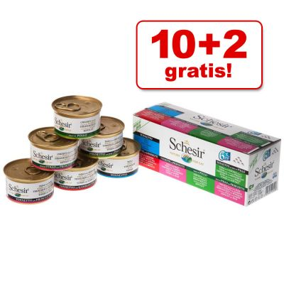 10 + 2 gratis! 12 x 100 g Schesir Busta misto