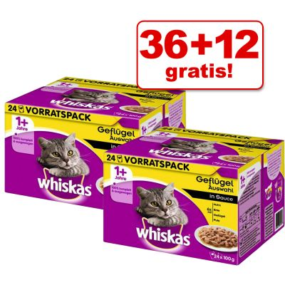 36 + 12 gratis! 48 x 100 g Whiskas 1+ buste