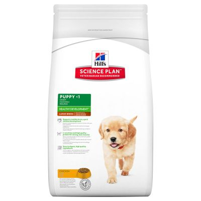 Hill's Puppy Large Breed Healthy Development con pollo