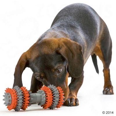 Hunter osso gioco per cani igiene dentale