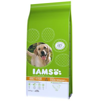 a marketing report for iams 2019 edition of iams marketing summit will be held at the  modern designs,  and assistance in executing a marketing plan  report error.