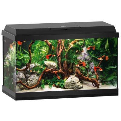 juwel aquarium primo led starter set 60. Black Bedroom Furniture Sets. Home Design Ideas