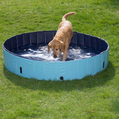 Keep Cool kutyamedence