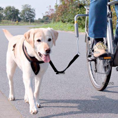 Kit de séparation pour vélo Trixie Biker-Set de Luxe