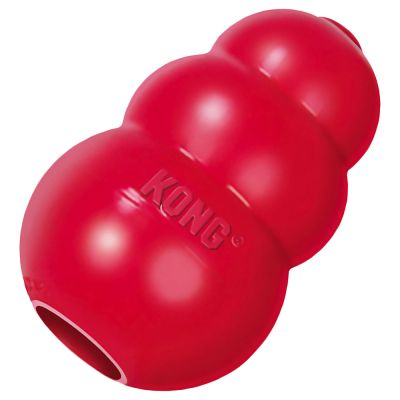 Kong Christmas Dog Toys
