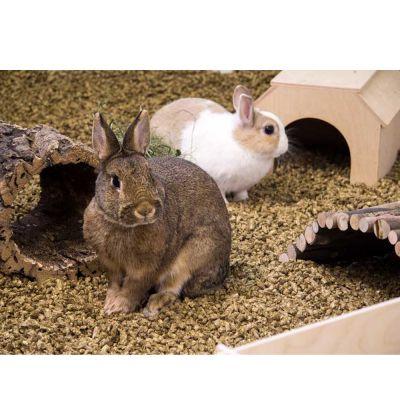 Lettiera per roditori Bunny Bedding Cosy
