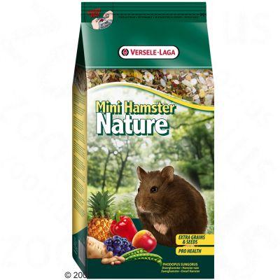 Mini Hamster Nature