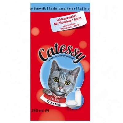 Mleko dla kotów Catessy