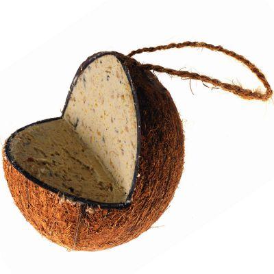 Noce di cocco con miscela di cibo energetico
