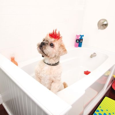 Pet Head Shampoo FURTASTIC CRÈME RINSE