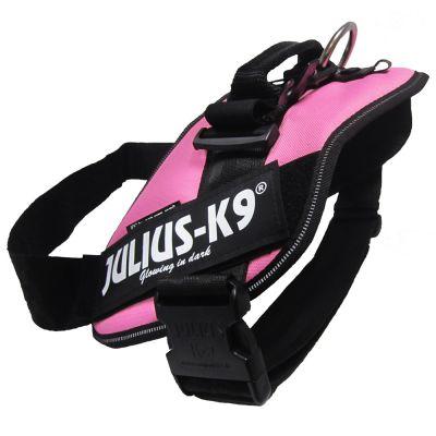 Pettorina Julius-K9 IDC® Pink