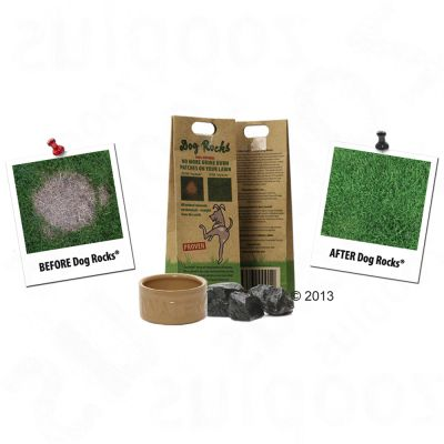 Pietre naturali Dog Rocks®