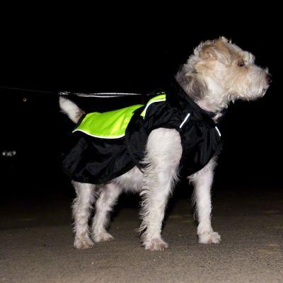 Plašč za pse Illume Nite Neon