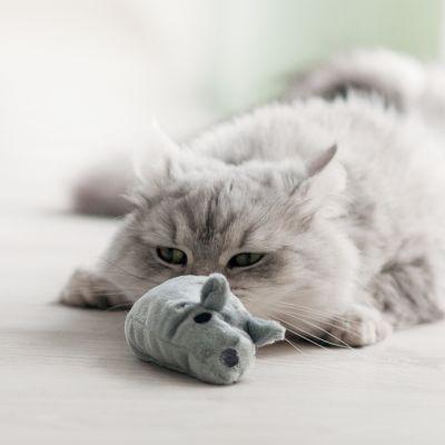 Ratón de juguete Aumüller Valerio con valeriana para gatos