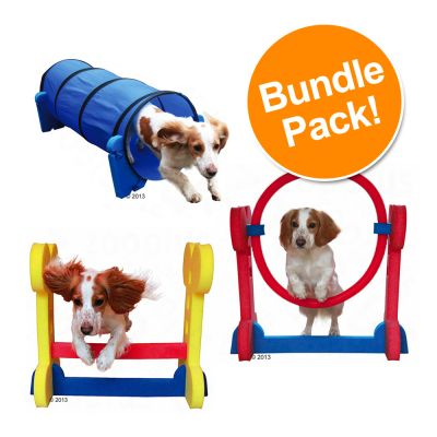 Rosewood Small Dog Agility Set - Saver Bundle!*