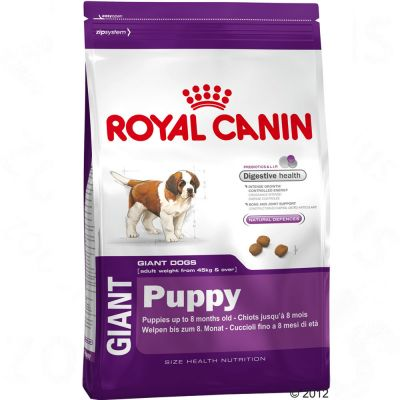 royal canin giant puppy. Black Bedroom Furniture Sets. Home Design Ideas