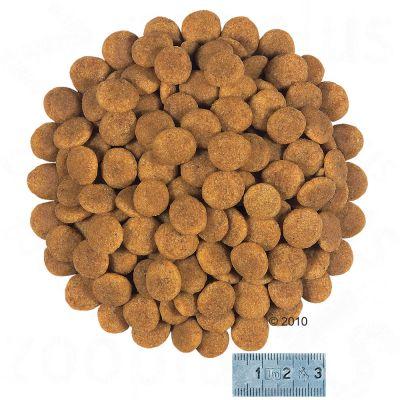 Royal Canin Mini Health Nutrition Dermacomfort