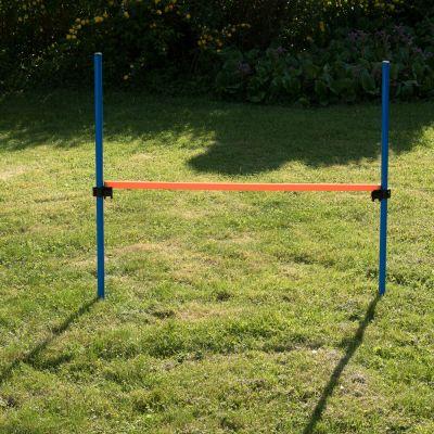 Salto ad ostacoli Agility Fun & Sport