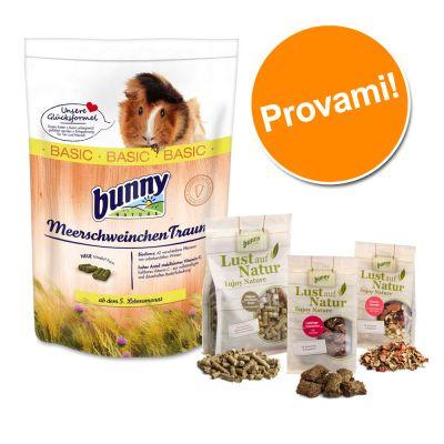 Set prova misto! Cibo + Snack Bunny per porcellini d'India