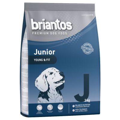Set prova misto per cuccioli Briantos Junior & Bosch HPC Puppy