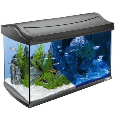 tetra aquaart led aquarium 60 l g nstig bei zooplus. Black Bedroom Furniture Sets. Home Design Ideas