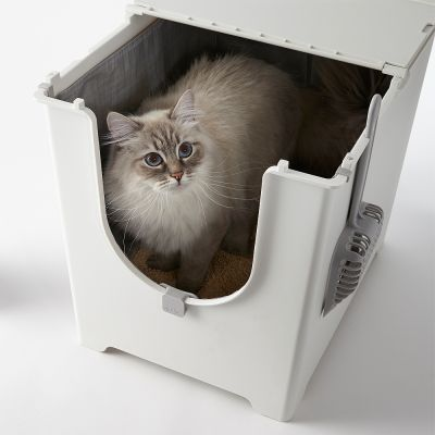 Toilette per gatti Modko Flip